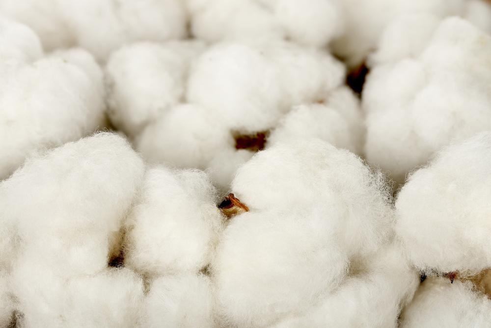 Natural cotton fillings