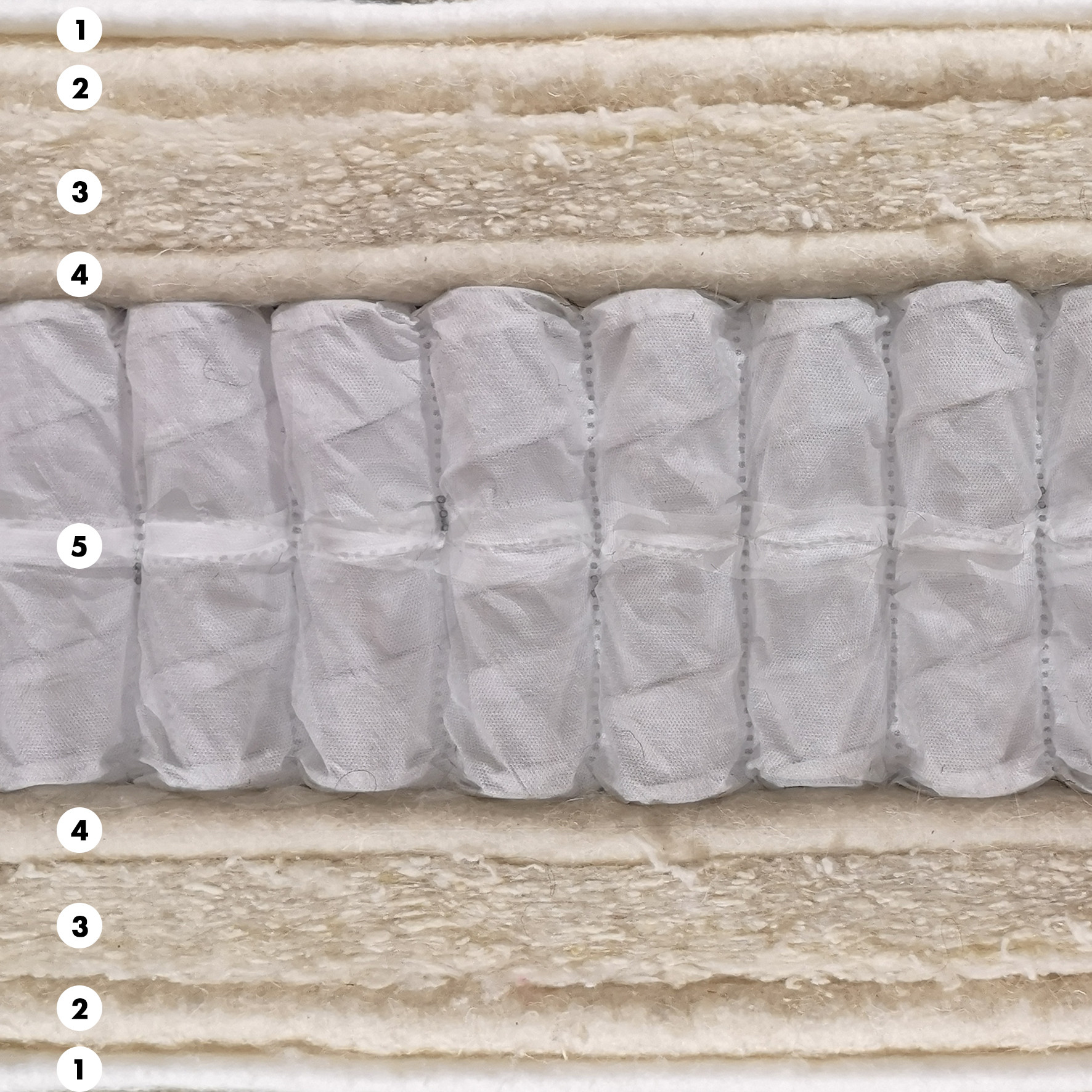 Juno wool
